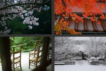 草菴の四季