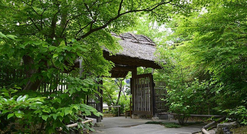 茅葺きの門・新緑