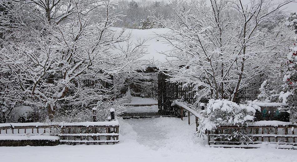 茅葺きの門・雪景色