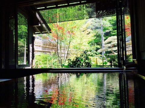 【島根観光】出雲大社の近くに「日本三美人の湯」があることを知っていますか?